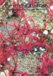 carniflora-australis-10-200709