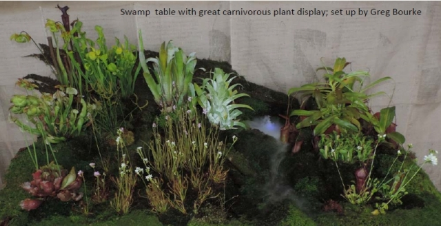 swamp-table